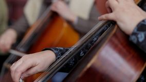 Cello. Musician play on cello stock footage