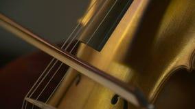Cello in orkest Musicus het spelen cello stock footage