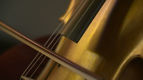 Cello in orkest Musicus het spelen cello stock videobeelden