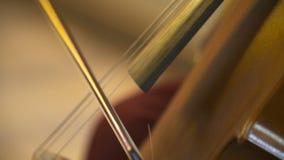 Cello in orkest Musicus het spelen cello stock video