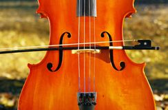 Cello outdoors in the park in fall autumn day with colourful lea royalty free stock photo