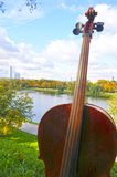 Cello in the park. Cello in the autumn park Royalty Free Stock Photography