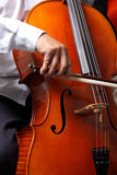 Cello Pizzicato Stock Images