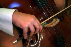 Cello player. Close up of a cello player royalty free stock photos