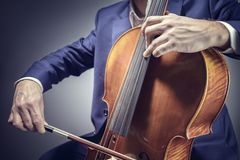 Cello player or cellist performing. In an orchestra isolated royalty free stock image