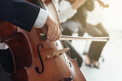 Cello player's hands close up Stock Image