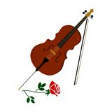 The cello and rose Stock Photography