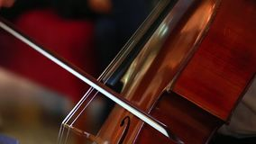 Cello speelclose-up stock video