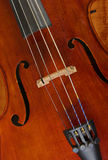 Cello or violin Royalty Free Stock Photo