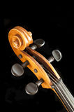 Cello or violoncello Royalty Free Stock Image