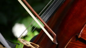 Cello or violoncello in a concert. Detail of arc and strings of cello or violoncello while it`s being played in a music concert of quartet strings instruments stock footage