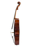 Cello on a white background Royalty Free Stock Images