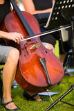 Cello. A woman plays the cello royalty free stock images