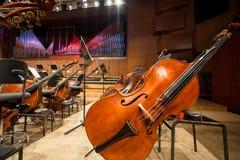 Cellos und Kontrabass, die auf dem Boden liegen Lizenzfreie Stockfotografie