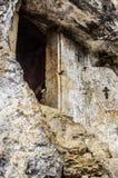 Cellula di Simon Kananit fotografie stock