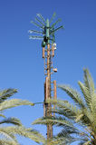 Cellular antenna disguised as a palm tree Stock Images