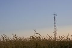 Cellular telecom tower. In a field Royalty Free Stock Photo