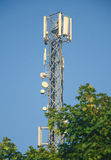 Cellular tower in forest Stock Photo