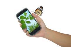 Cellulare della tenuta della mano con la natura Fotografia Stock