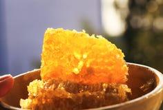 Cellule avec le mensonge d'or frais de miel du plat brillant au su Image libre de droits