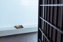cellule de prison vide avec l'échiquier photo stock