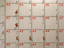 Cellule di memoria nel supermercato Fotografia Stock Libera da Diritti