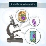 Cellule sotto il microscopio Laboratorio scientifico royalty illustrazione gratis
