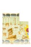 Cellule vegetali di modello con la clorofilla dei cloroplasti in foglia fotografia stock libera da diritti