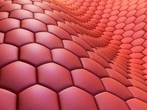 Cellules illustration de vecteur