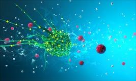 Cellules de virus sous un microscope Photo libre de droits