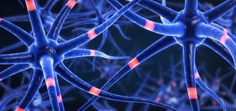 Cellules du cerveau de transmission colorées par bleu illustration de vecteur