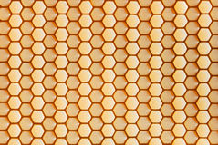 Cellules hexagonales Photos stock