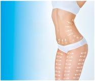 Celluliteborttagningsplanet Vit teckning på kropp för ung kvinna Royaltyfri Foto