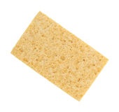 Cellulose sponge. A new cellulose sponge isolated on a white background stock photography