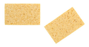 Cellulose sponges. Two new cellulose sponges isolated on a white background stock images