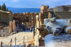 The Celsus Library of Ephesus Ancient City Royalty Free Stock Images