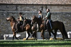 Celtic adelt Reitpferde in den traditionellen Kostümen Lizenzfreies Stockbild