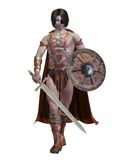 Celtic fighter 1. 3D render of a fantasy Celtic fighter Stock Illustration