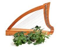 Celtic harp Royalty Free Stock Photo