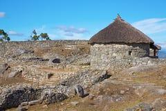 celtic hyddor Arkivfoto