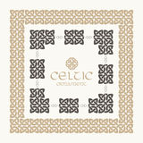 Celtic knot braided frame border ornament kit. Royalty Free Stock Image