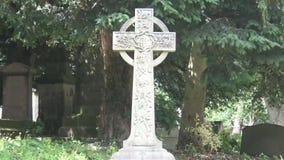 celtic kors stock video
