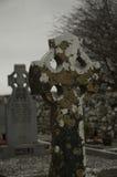 Celtic Lichen Stock Photo