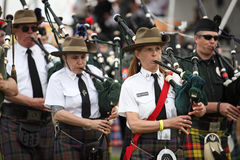 Celtic Piper Stock Image