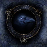 Celtic Raven Spell Photos stock