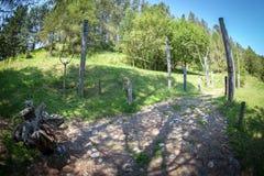 Celtic sacrificial place at Havranok - Slovakia Royalty Free Stock Photography