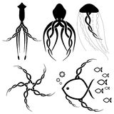 Celtic sealife tattoo designs Royalty Free Stock Photos