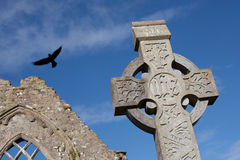 Celtic Stone cross Stock Image