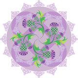 Celtic symbols ornament with flowers thistle and Celtic knots Royalty Free Stock Image