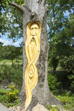 Celtic tree engraving in tarbert park Royalty Free Stock Photo